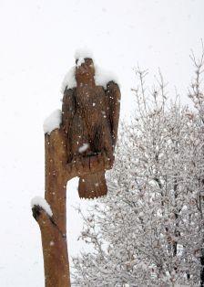 snow eagle